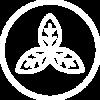 KALEZIA-ingredienti-vegetali-bianca